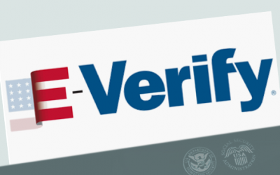 Is E Verify right for You
